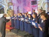 Festiwal Chórów Lekarskich – to najważniejsze wydarzenie muzyczne środowisk medycznych. Jego celem jest upowszechnianie muzyki klasycznej oraz zapewnienie melomanom najwyższego poziomu muzycznego.